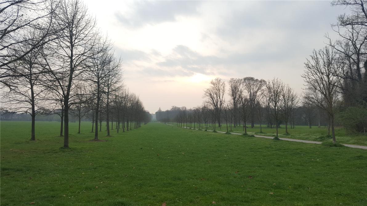 traccia mtb parco monza